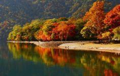 600x600tour-nikko-breathtaking-beautytrip-from-1403-800x506-493-20171116-2
