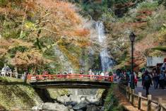 Osaka, Japan - November 27, 2015: Mino waterfall in Mino Quasi-national Park in Osaka, tourists enjoy to take photo with the waterfall in the autumn season.